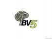 BV5 Mini Logo