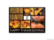 Happy Thanksgiving 13